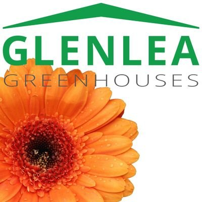 Sue MacLeod, Glenlea Greenhouses